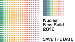 read more: NSSG at NIA Nuclear New Build – Energy White Paper promises opportunity