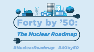 read more: Forty by '50: The Nuclear Roadmap